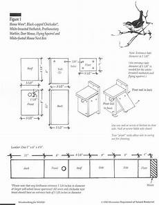 bird house plans for robins bird house plans for robins bluebird house plans bird house