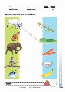 worksheets with animals and their food 14086 free pre primary worksheets