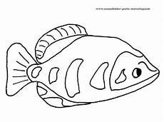 Fische Malvorlagen Zum Ausdrucken Berlin Ausmalbilder Fische Gratis 05 Ausmalbilder Fische