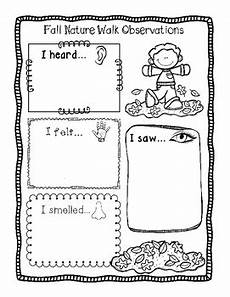 nature worksheet for kindergarten 15159 two free fall nature walk observation worksheets differentiated