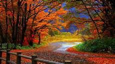Nature Desktop Wallpaper Fall Background Images