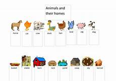 animal homes worksheets 13902 animals and their homes