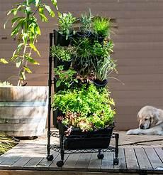 Vertikaler Garten Kaufen - how to create a greenwall vertical garden holman