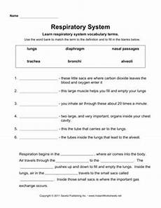 science worksheets respiratory system 12369 respiratory system respiratory system human systems respiratory system anatomy