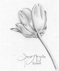 pin by frankie machado on pencil shaded flowers pencil