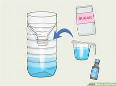 Tue Mouche Efficace 3 Ways To Catch Flies Wikihow