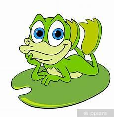 Ausmalbild Frosch Auf Seerosenblatt Fototapete Netter Frosch Auf Einem Seerosenblatt Pixers