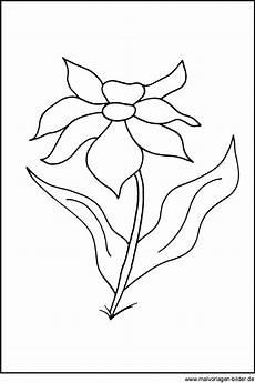 Malvorlagen Blumen Pdf Kostenlose Malvorlagen Blumen