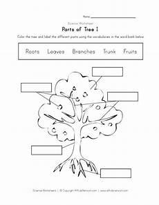 kinds of plants worksheets for kindergarten 13653 tree worksheet 나무