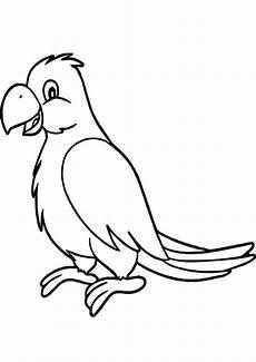 Ausmalbilder Tiere Papagei Ausmalbilder Papagei 20 Ausmalbilder Tiere