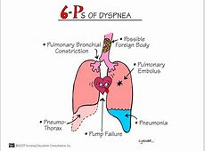how pneumonia affects the body