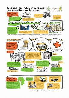 infographic how index insurance can help smallholder farmers