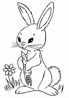 Malvorlagen Unicorn Rabbit Malvorlagen Unicorn Rabbit