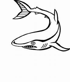 Malvorlagen Meerestiere Meerestiere Malvorlagen Malvorlagen1001 De
