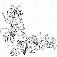 Malvorlagen Gratis Lilien Stock Photo Lilien Blumen Scherenschnitt Vorlagen Und