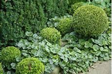 pflanzen trockener standort landscape focused landscape garden design ideas