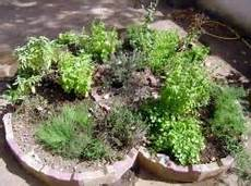 conserver herbes aromatiques conserver des herbes aromatiques