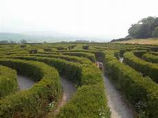 peace maze picture of castlewellan forest park