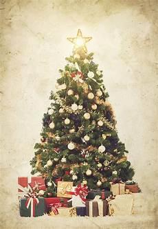 weihnachtsbaum online so geht s den wirklich perfekten weihnachtsbaum finden