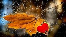 bruit de pluie et vent l hiver le vent la pluie seheno