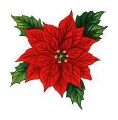 Blumen Malvorlagen Kostenlos Xyz Weihnachtsstern Blumen Animierte Bilder Gifs