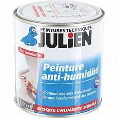 peinture isolante extérieure peinture anti humidit 233 julien bo 238 te 500 ml de peinture