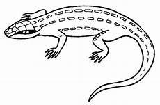 Ausmalbilder Reptilien Malvorlagen Reptilien Ausmalbilder
