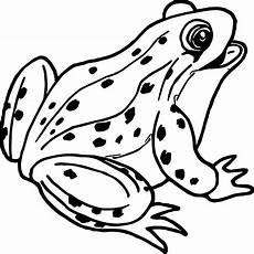 tree frog coloring pages free on clipartmag