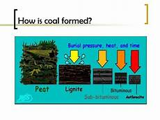 ppt what is coal s role in shaping the fate of the industrialized world powerpoint