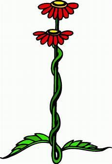 Malvorlagen Blumen Bunt Rote Blumen Bunt Ausmalbild Malvorlage Haushalt