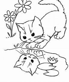 cat pics coloring home
