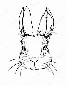 Ausmalbilder Hasen Kopf Gezeichnete Hasen Bilder Vorlagen Zum Ausmalen Gratis