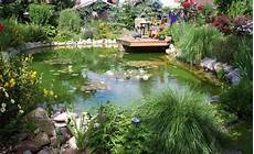 Pflanzen Am Teich Gartenteiche Sch 246 N Bepflanzen Zierg 228 Rten Gartenteich Bepflanzen Teich Und Teich Ideen