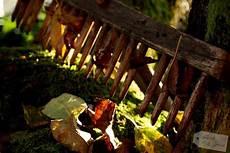gartenarbeit im oktober gartenarbeiten im oktober living green