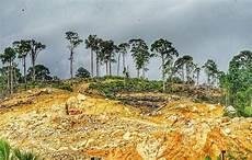 Gambar Gambar Kemusnahan Hutan Simpan Bukit Galing Di