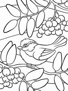 Ausmalbilder Blumen A4 Sch 246 Ne Malvorlagen F 252 R Kinder Beliebte Bilder Zum Ausmalen