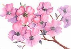 Watercolor Flowers Tutorials On Watercolor