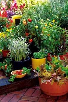 Apartment Patio Container Garden by Grow Your Own Container Gardens Organic Gardening