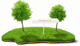 покупка дома и земельного участка за материнский капитал