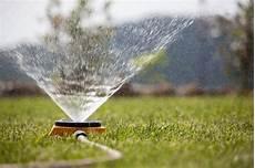 wann rasen wässern rollrasen w 228 ssern 187 wie viel und wie oft
