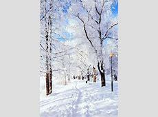Winter Wonderland HD desktop wallpaper : High Definition