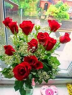 3 Gambar Bunga Mawar Merah Indah Paling Banyak Dicari