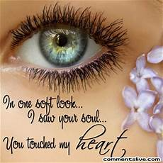 Cat Eye Quotes Quotesgram