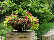Container Gardening Plants