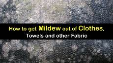schimmel in kleidung how to get mildew out of clothes towels and other fabric