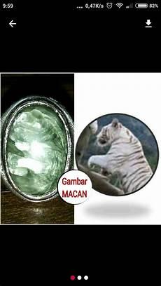 Jual Batu Bulu Macan Hijau Gambar Motif Harimau Putih