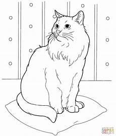 Ausmalbilder Siamkatze Ausmalbild Sibirische Katze Ausmalbilder Kostenlos Zum