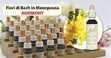 fiori di bach menopausa fiori di bach in menopausa agrimony menopausa