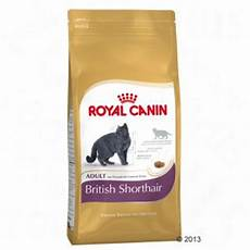 Royal Canin Kitten Shorthair - royal canin shorthair great deals at zooplus