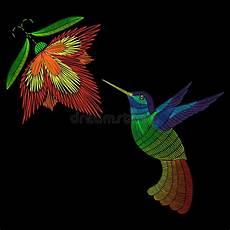 Malvorlage Vogel Mit Blume Stickereikolibri Exotischer Tropischer Vogel Mit Blume